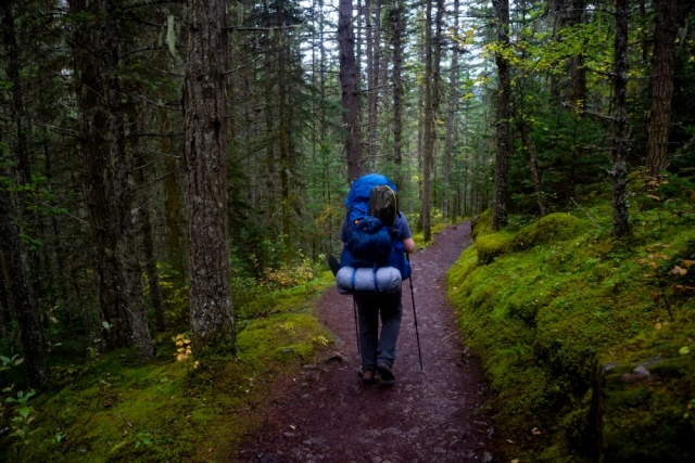 Man backpacking The Berg Lake Trail - Mount Robson Provincial Park, British Columbia - Tracey Sawatzky, Adventure Photographer
