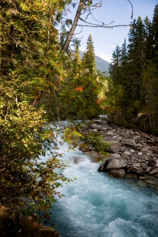 River on The Berg Lake Trail - Mount Robson Provincial Park  - Tracey Sawatzky, Adventure Photographer