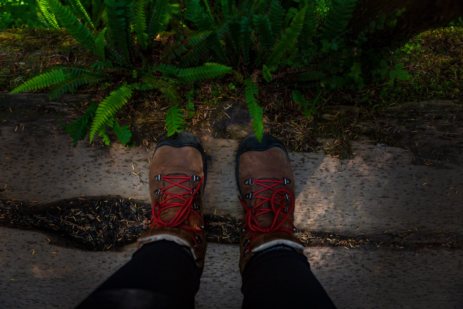 Keen Pyrenees Hiking Boots on the Rainforest Trail, Vancouver Island, British Columbia  - Tracey Sawatzky, Adventure Photographer
