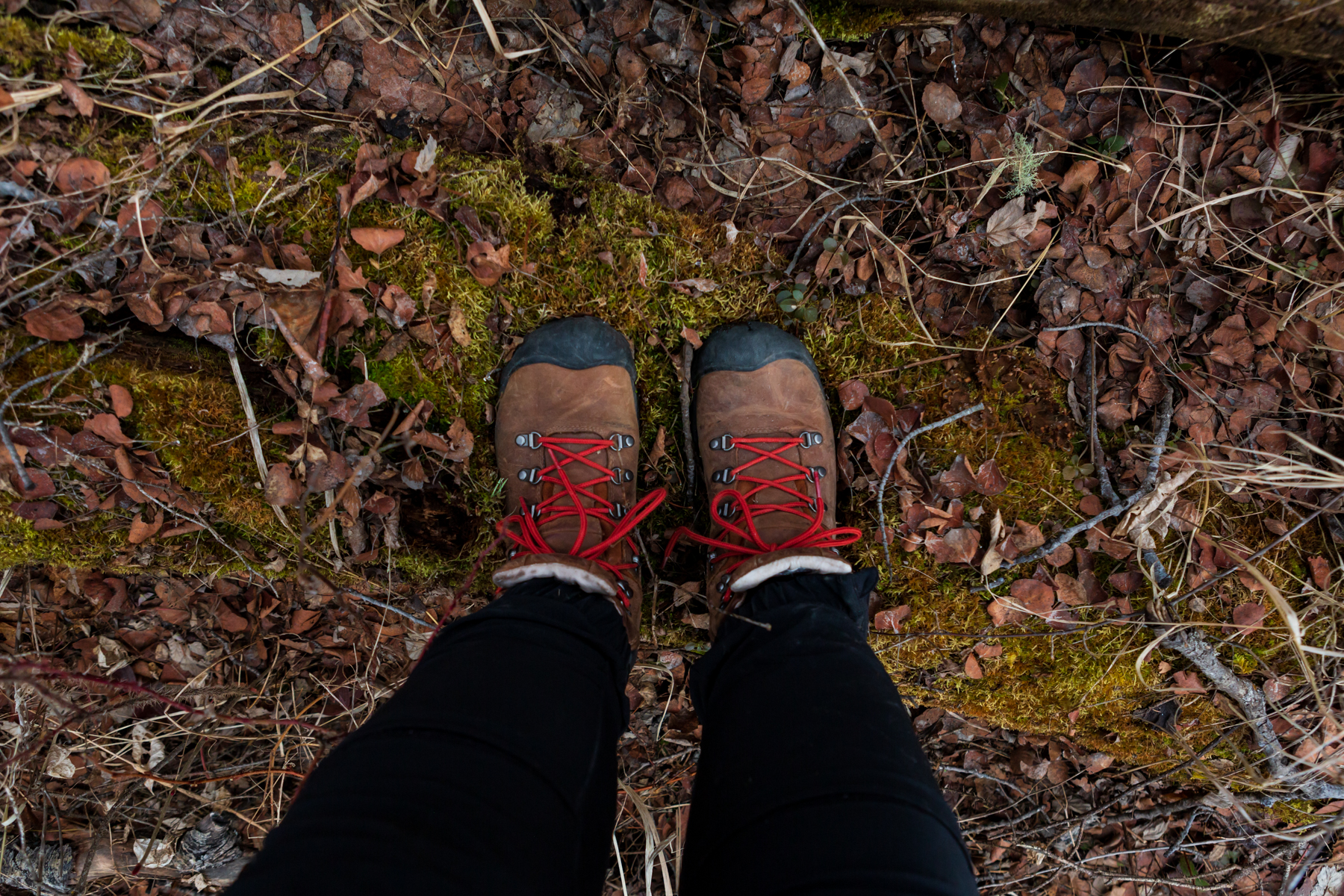 women (from the knees down) wearing hiking boots standing on a fallen, mossy tree. as she is off-trail hiking
